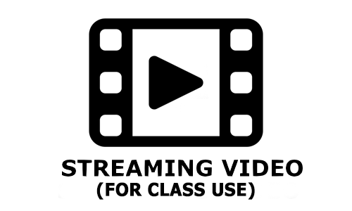 Streamin Video Options Icon